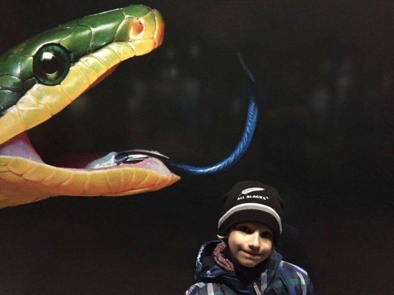 Ruhrgebiet Fujifilm X-E2 Children Oberhausen Ausstellung: Wunder der Natur im Gasometer Oberhausen.
