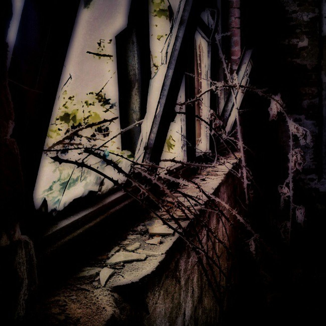 #creepywindowsunday #grimewindow Grimewindow Creepywindowsunday Dark_arts_hdr