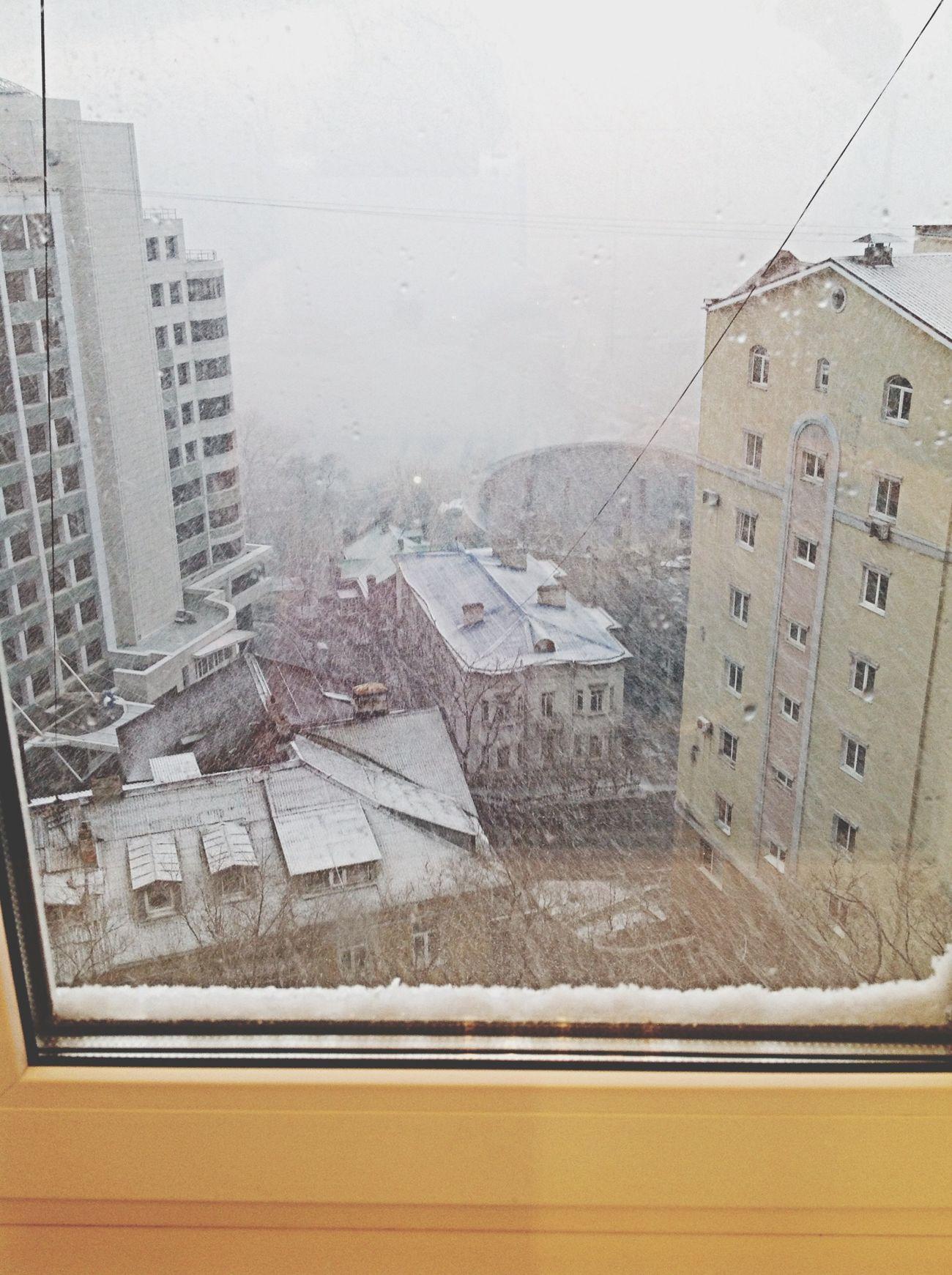 Snow Snow In Spring Vladivostok Владивосток.