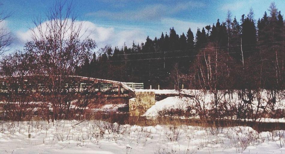 Newfoundland Bridge Trussle River Winter Cold Snow Roadtrip