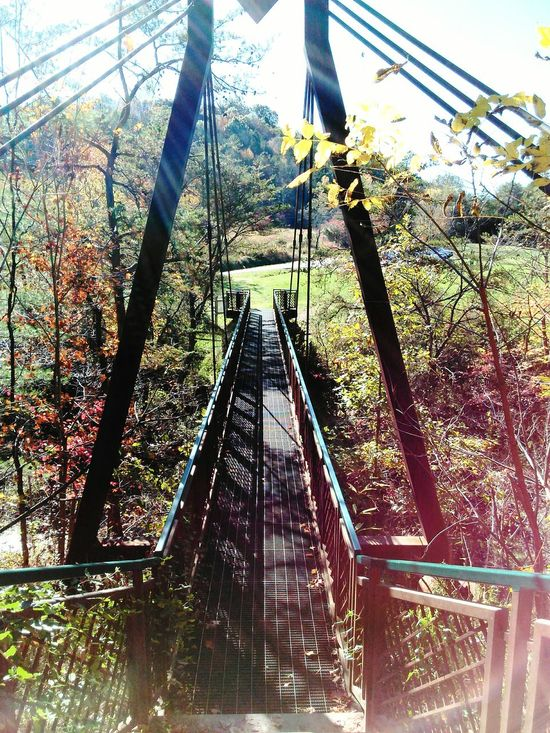 Sun shining through the cold air First Eyeem Photo Hockinghills Ohio Sun Beautiful Bridge Nature