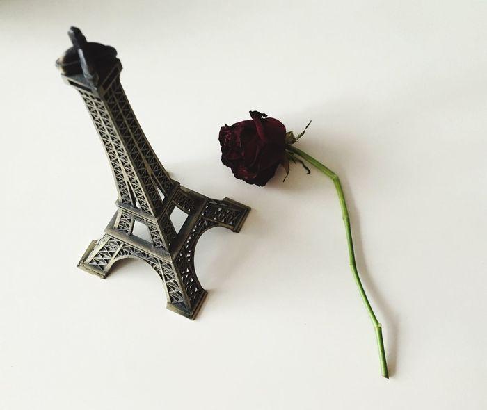 JesuisParis ParisAttacks Prayforparis PrayForParis🙏 Paris