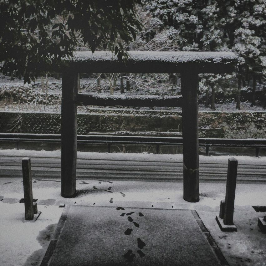 Day Snow Sky No People 溺れるものは藁でも掴む Winter Walk た 冬の日 黄昏時 Blackandwhite JapaneseStyle Black And White Black & White Streetphotographer EyeEm Selects Emeye Best Shots Daytime Photography Nature Colors Emeyebestshot Black&white Life Backgrounds Nature Photograhy 神頼み