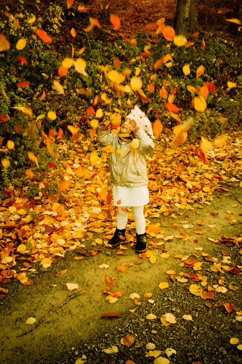 Action Adventure Autumn Autumn Colors Autumn Leaves Beauty In Nature Dramatic Angles Childhood Enjoyment EyeEm Kids EyeEm Nature Lover Eyeemphoto Falling Leaves Fun Girl Girl Power Innocence Kid Kids Being Kids Kids Having Fun Leaves Enjoy The New Normal Outdoors Playing Season