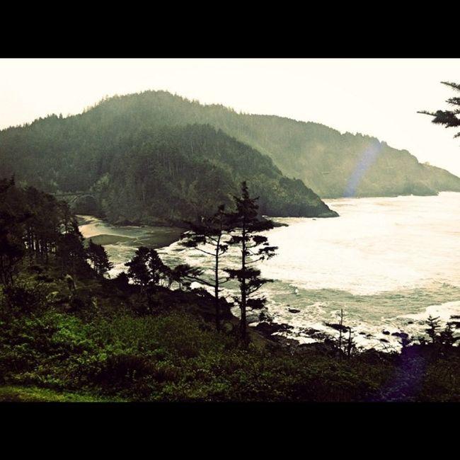 Oregoncoast PNWonderland Pnwonderland_forest Pacificocean Pacificbeach Instadaily Nature_perfection Instamood Lumiaphotography Dailypic Greettheoutdoors Stokedonlife