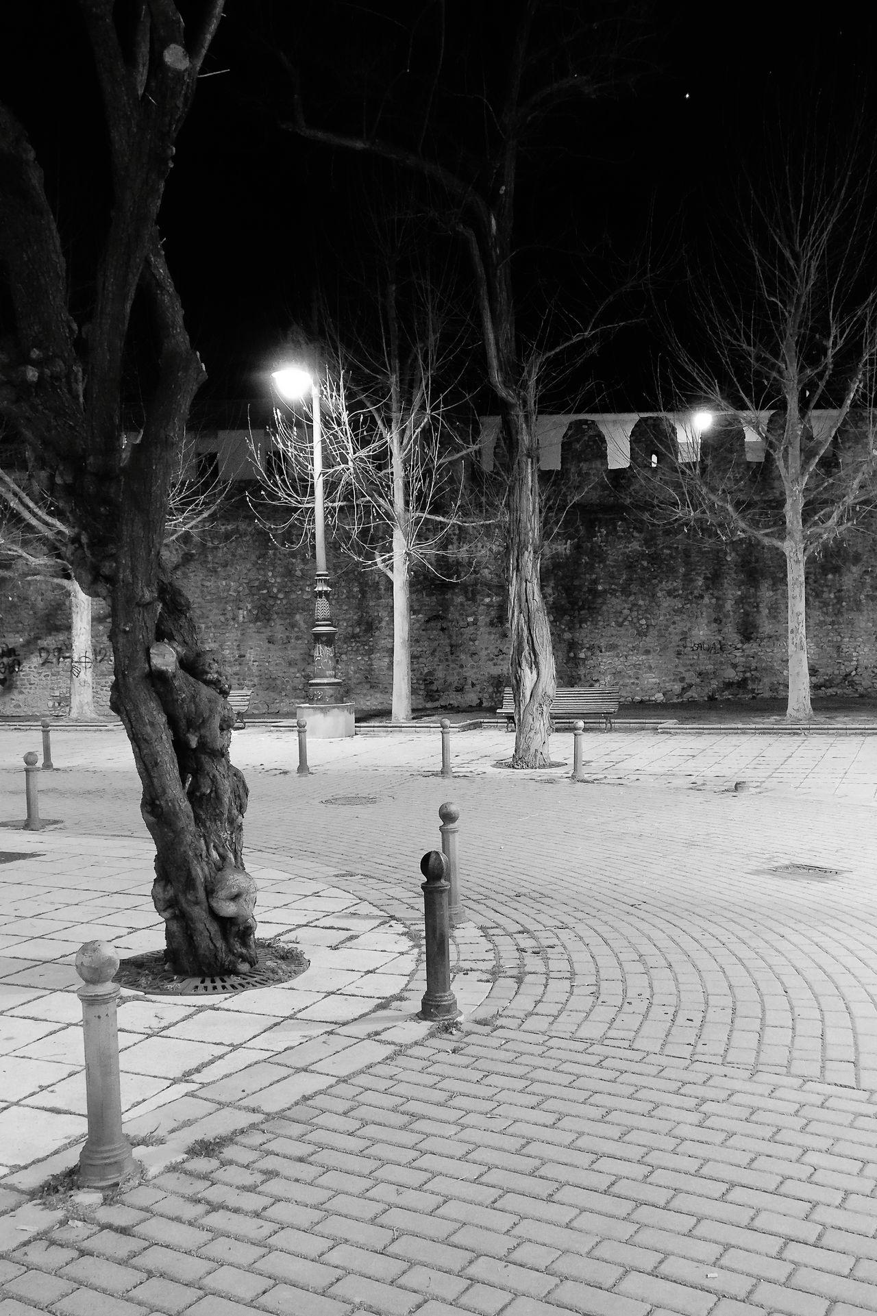 Un rincón Tree Outdoors No People Illuminated Night Night Lights Nightphotography LeonEsp  City