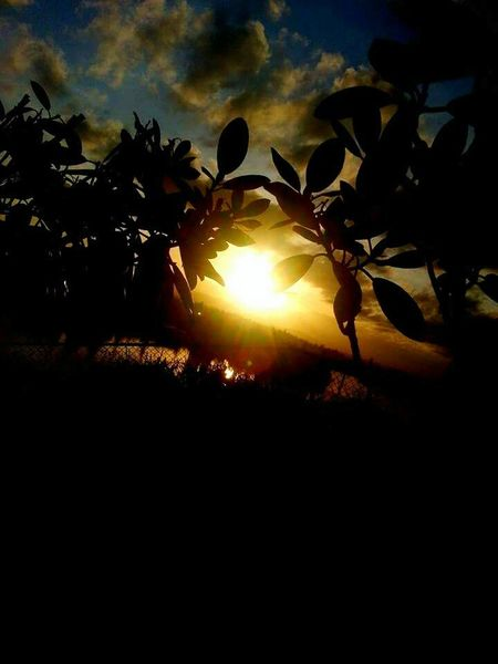 Epic Shot Photography Northwestsunsets Northwestnaturetrek Gettyimagesgallery Getty Images Nationalgeographic Springtime ,march Showcase Getty X EyeEm Images Q13spring Urban Spring Fever EyeEm Gallery Wild & Pure EyeEm Nature Lover King5spring Nature_collection Landscape_collection EyeEmNatureLover Showcase March Getty X EyeEm Getty & Eyeem Washington State Things I Like EyeEm Sunset EyeEmxGettyImages