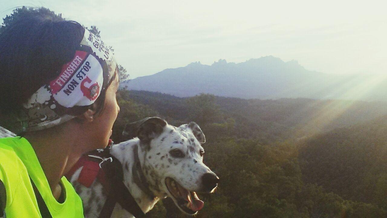 Canicross Training Time Canicross Dalmata Dog Love Views Workout Running Forest Montserrat Atardecer Sunset #sun #clouds #skylovers #sky #nature #beautifulinnature #naturalbeauty #photography #landscape Sunset