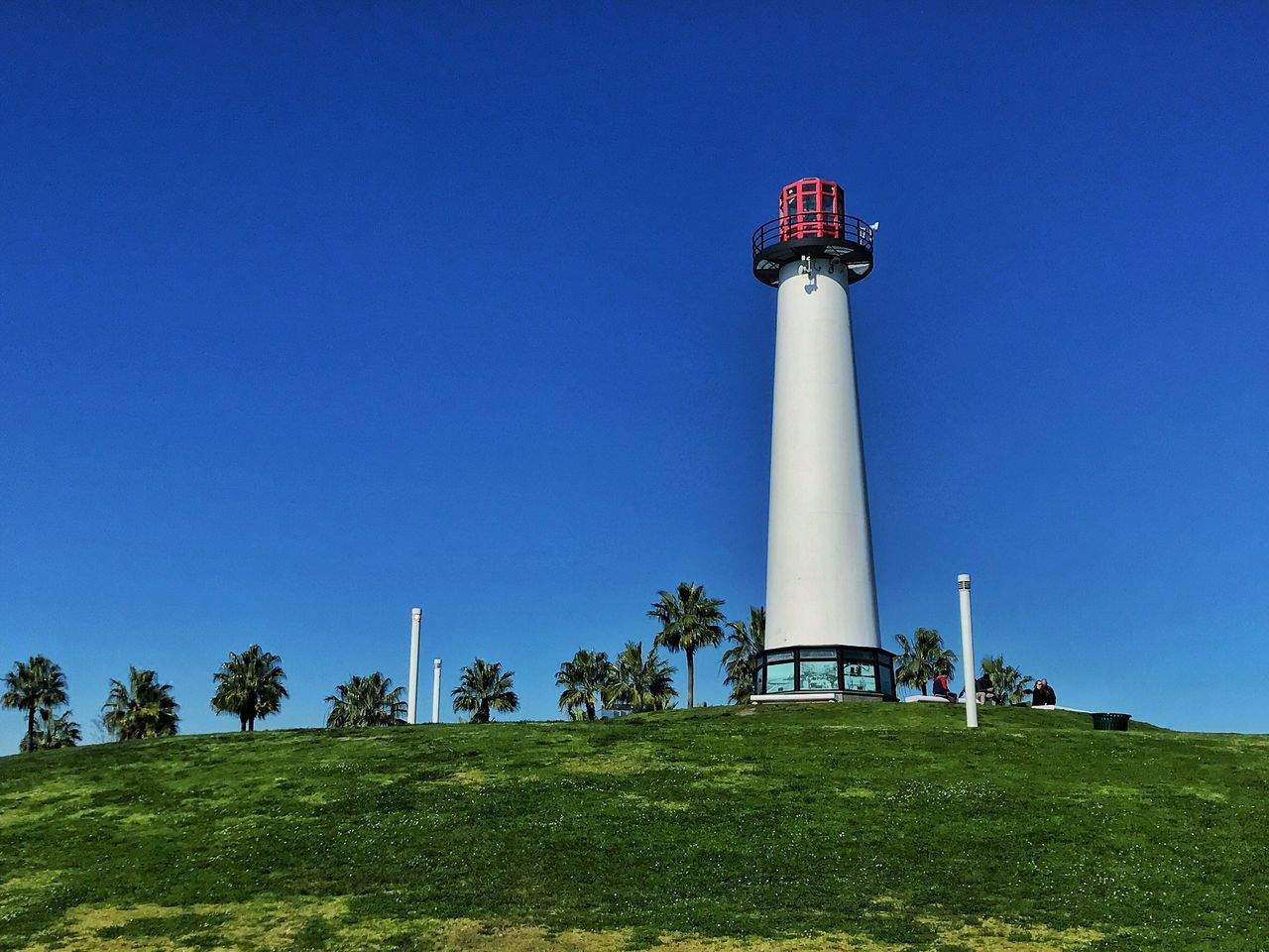 clear sky, architecture, blue, copy space, day, low angle view, built structure, outdoors, lighthouse, no people, grass, tree, nature, sky