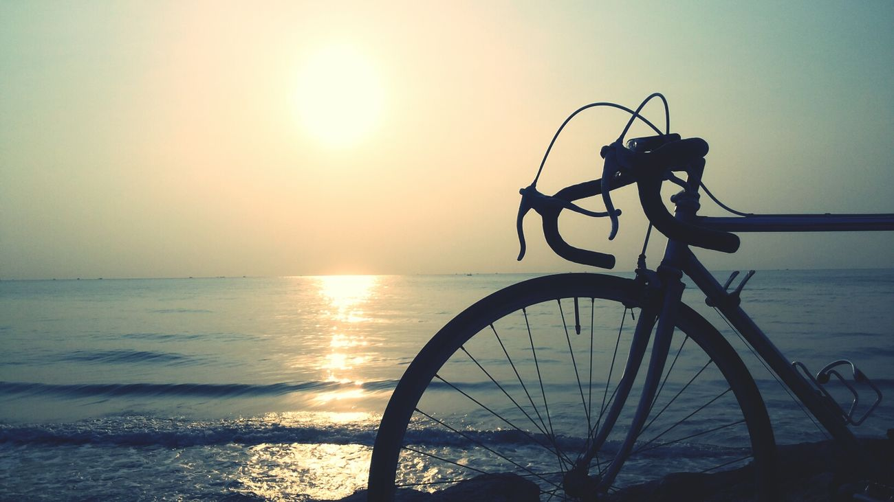 follow the sun My Bicycle Bicycle Trip Sea Life