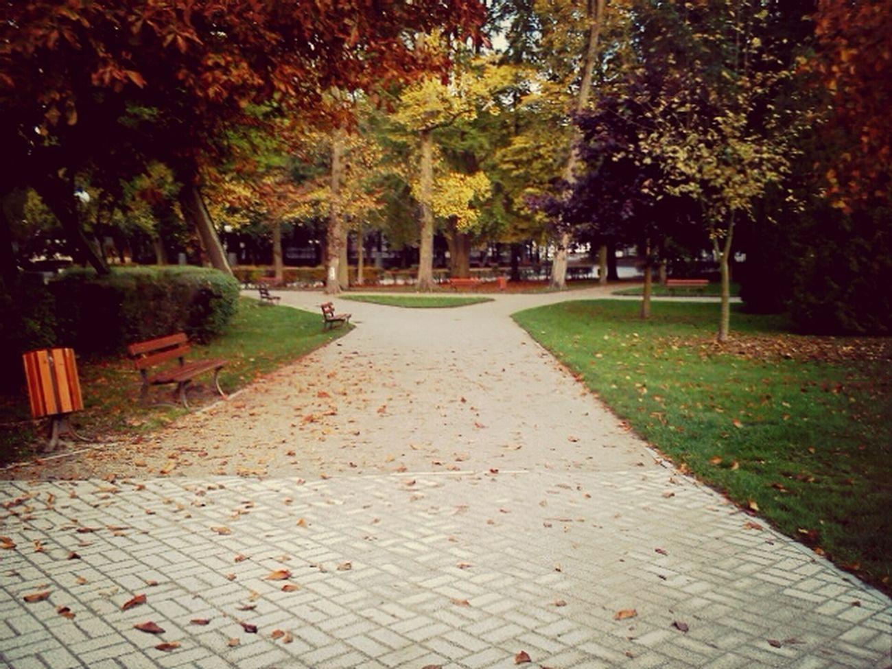 . autumn Amazing Poland