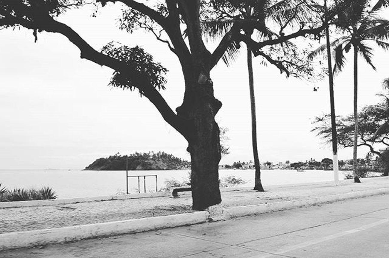 O quê que a Bahia tem?! - Ilhéus 🌴 Vscocam VSCO Photolike Brazilphotos Bahia Photooftheday