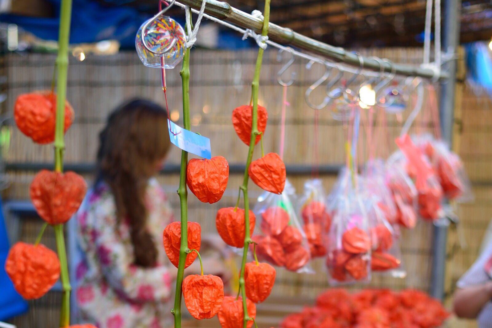 浅草寺ほおずき市 Asakusa Sensouji Sensoji Temple  Ultimate Japan Hozuki Chineselantern Groundcherry Windbell