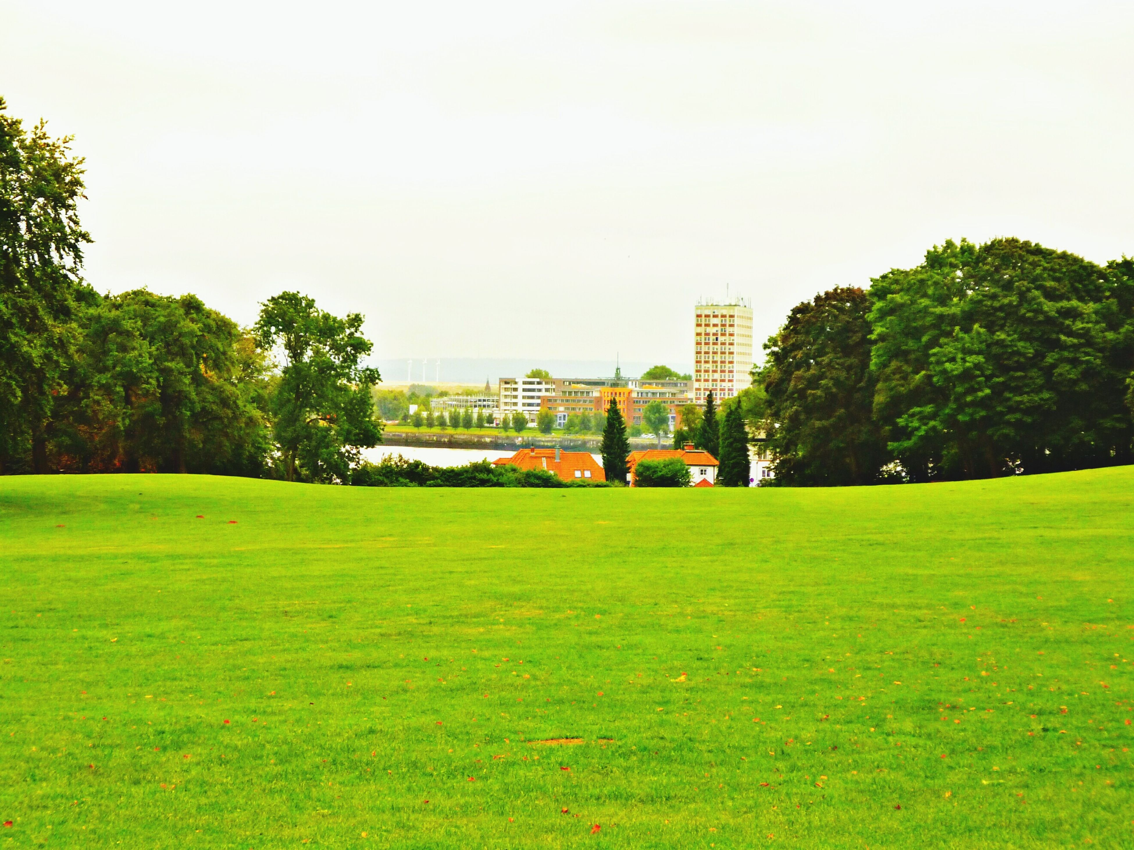 grass, architecture, building exterior, built structure, tree, green color, clear sky, lawn, grassy, copy space, growth, field, city, green, park - man made space, sky, grassland, day, nature, outdoors