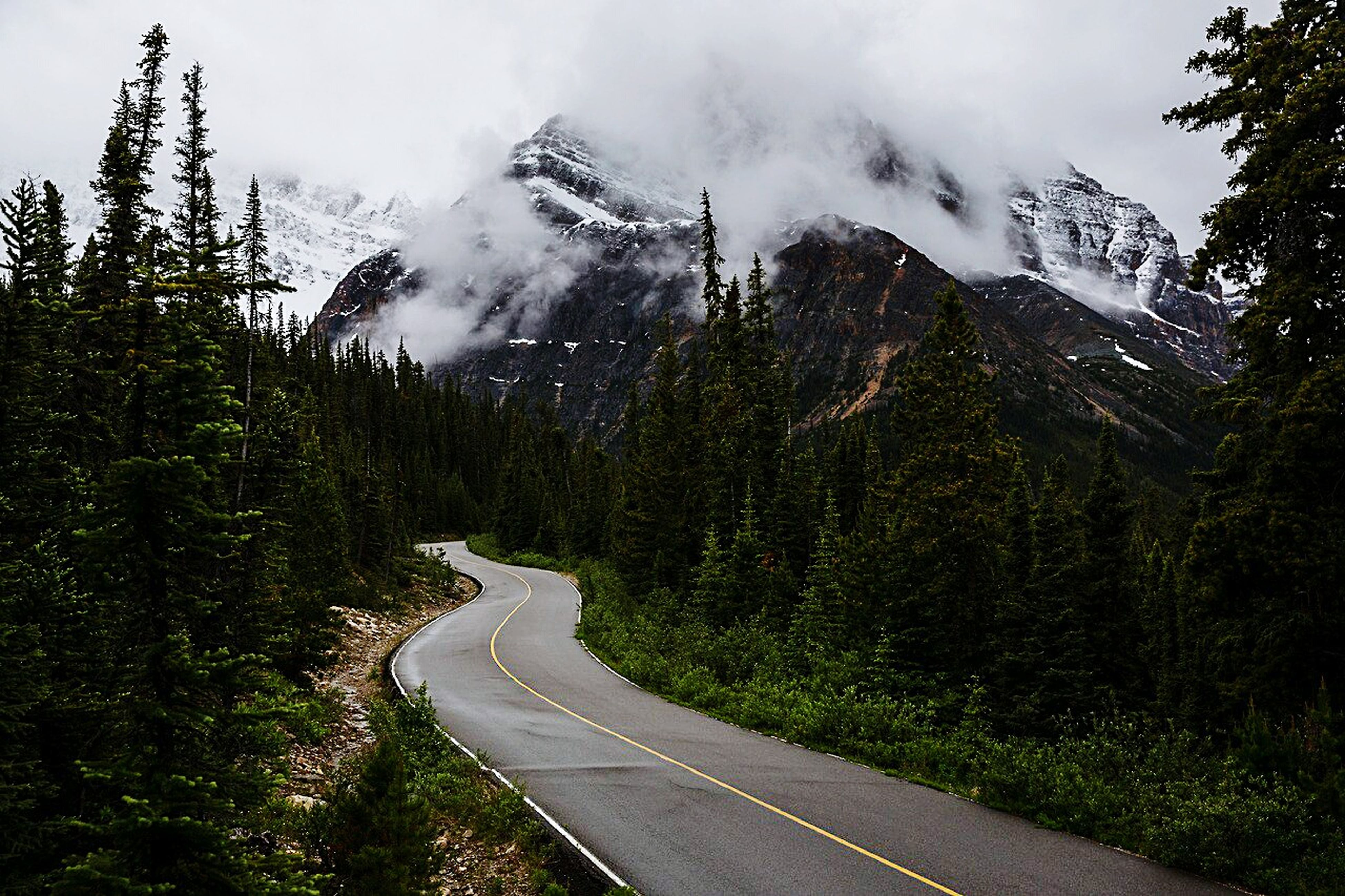 mountain, winding road, curve, nature, road, mountain range, beauty in nature, tree, transportation, landscape, scenics, no people, mountain road, forest, day, outdoors, sky