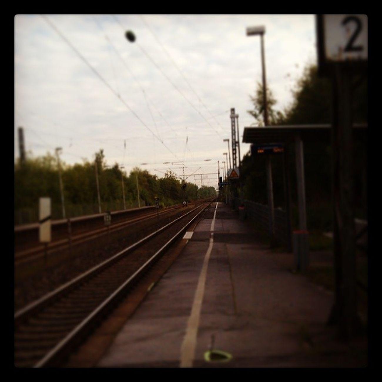 Bahnhof Derne Zug Warten Alleine KeinerDa