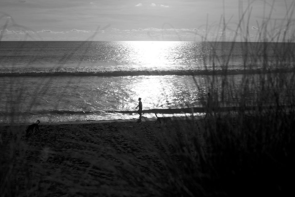 Bali Bali, Indonesia Beach Beauty In Nature Black And White Day INDONESIA Copy Space One Person Walking On The Beach Monochrome Nature Outdoors People Real People Sand Scenics Sea Silhouette Sky Tranquil Scene Two People Vacations Water