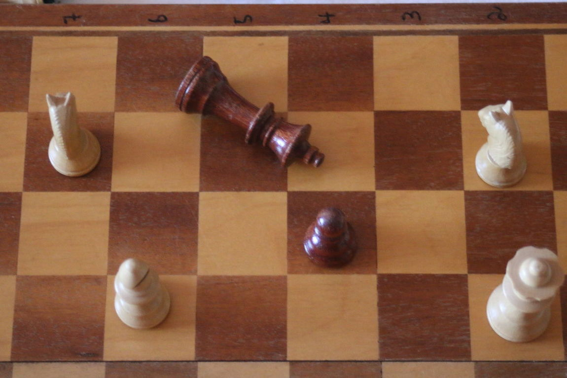 Arrangement Bathroom Chess Chessboard Close-up Domestic Room Elevated View Flooring Hardwood Floor No People Pattern Pieces Perfect Match Schachbrett SCHACHMATT Side By Side Still Life Tile Variation White Wood - Material