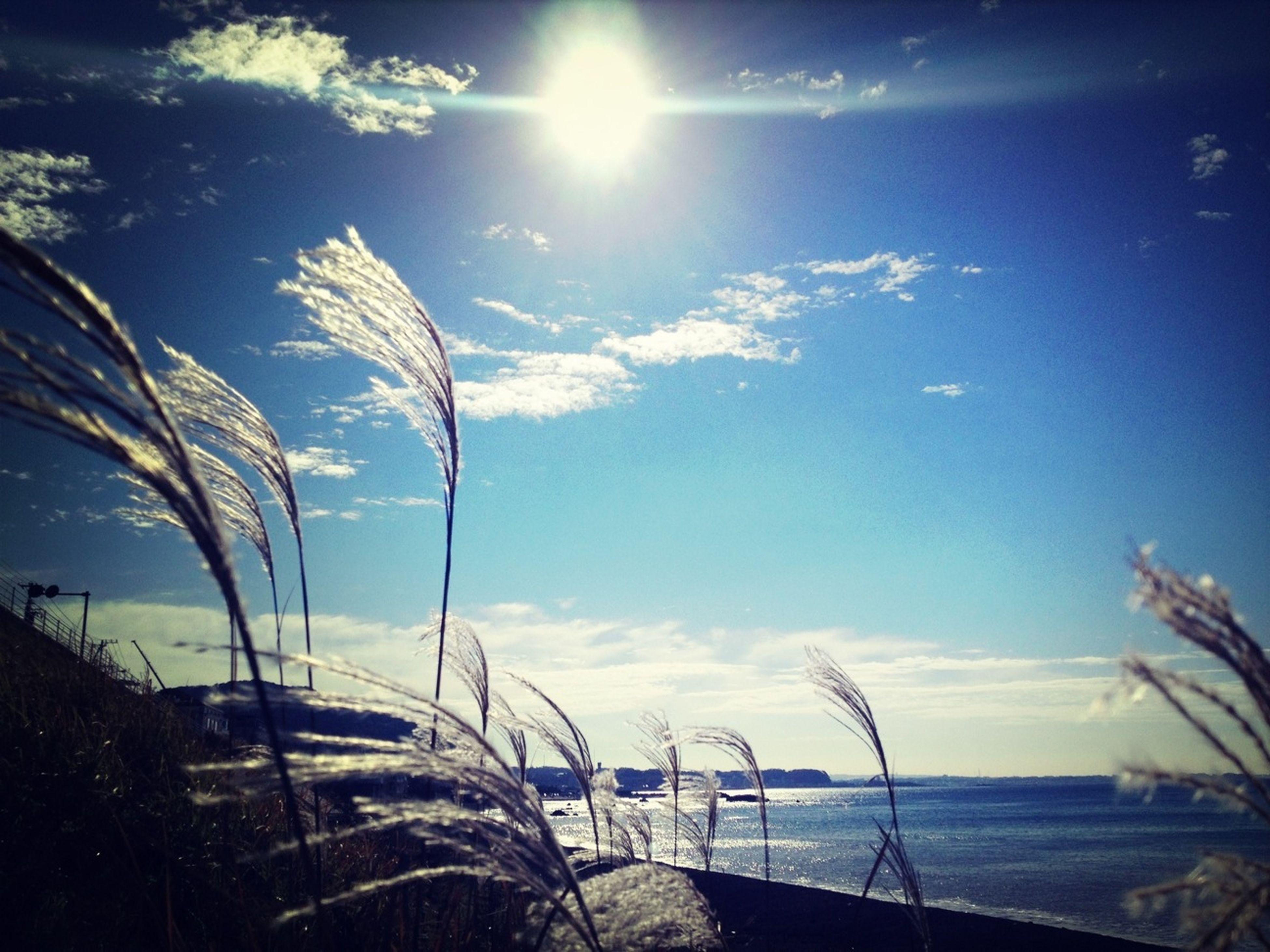 water, sea, sky, sun, tranquility, sunlight, tranquil scene, sunbeam, beach, scenics, nature, beauty in nature, horizon over water, blue, lens flare, shore, sunny, idyllic, cloud - sky, day
