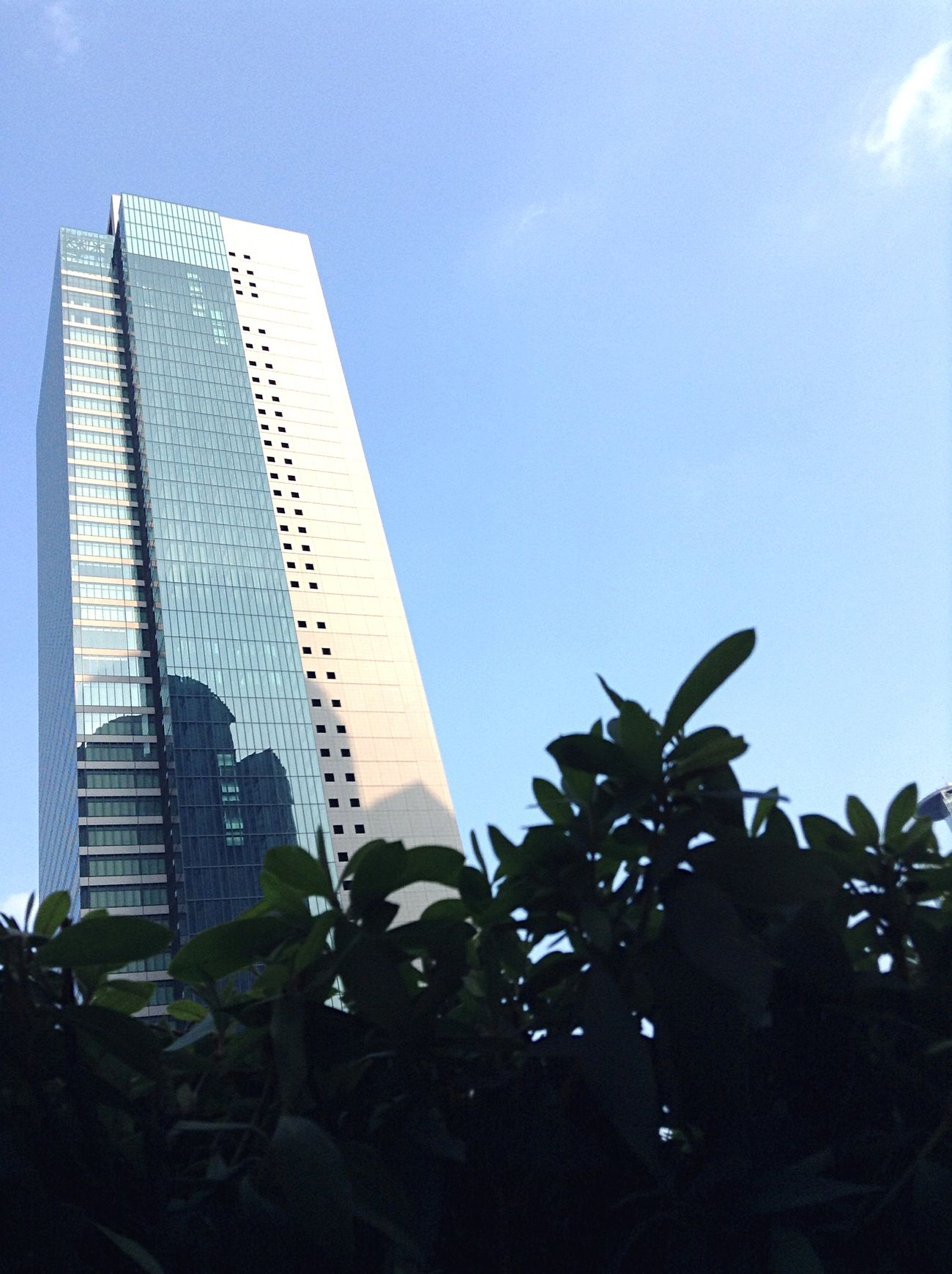 Summer Sky Blue 夏 空 青 青空 ビル