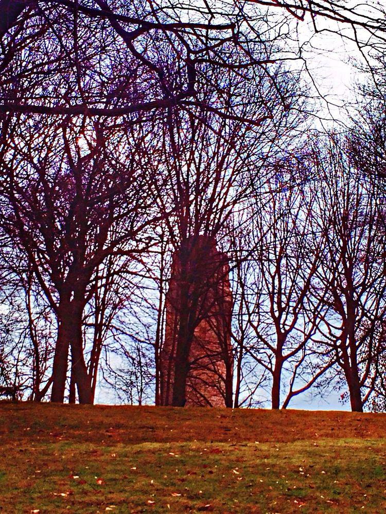 Tower People Watching Walking Walking Around