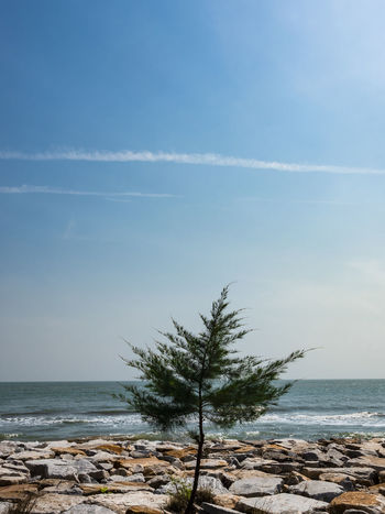 Beach Beauty In Nature Day Horizon Over Water Nature No People Outdoors Scenics Sea Sky Tranquil Scene Tranquility Water