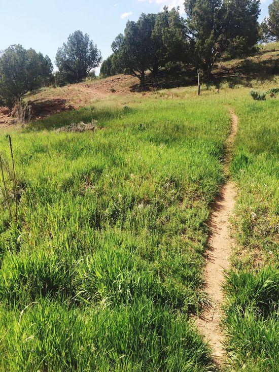 Trail Hike Utah Rockport Camping Lake Walk Dirt Road