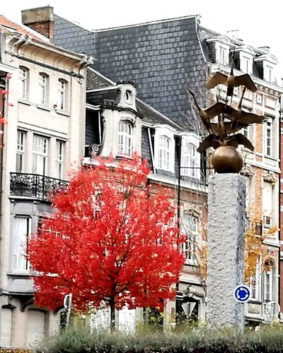 City Autumn Colors Red