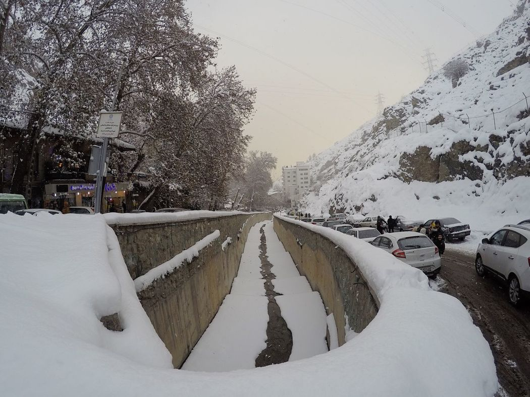 Darband Tehran Snow Cold Temperature Winter Weather Tree Nature Beauty In Nature Iran Snow ❄ Nature