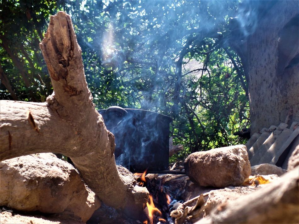 Campestre Cocina Day Fire Fogon Fuel And Power Generation Nature No People Outdoors Rústico  Tree
