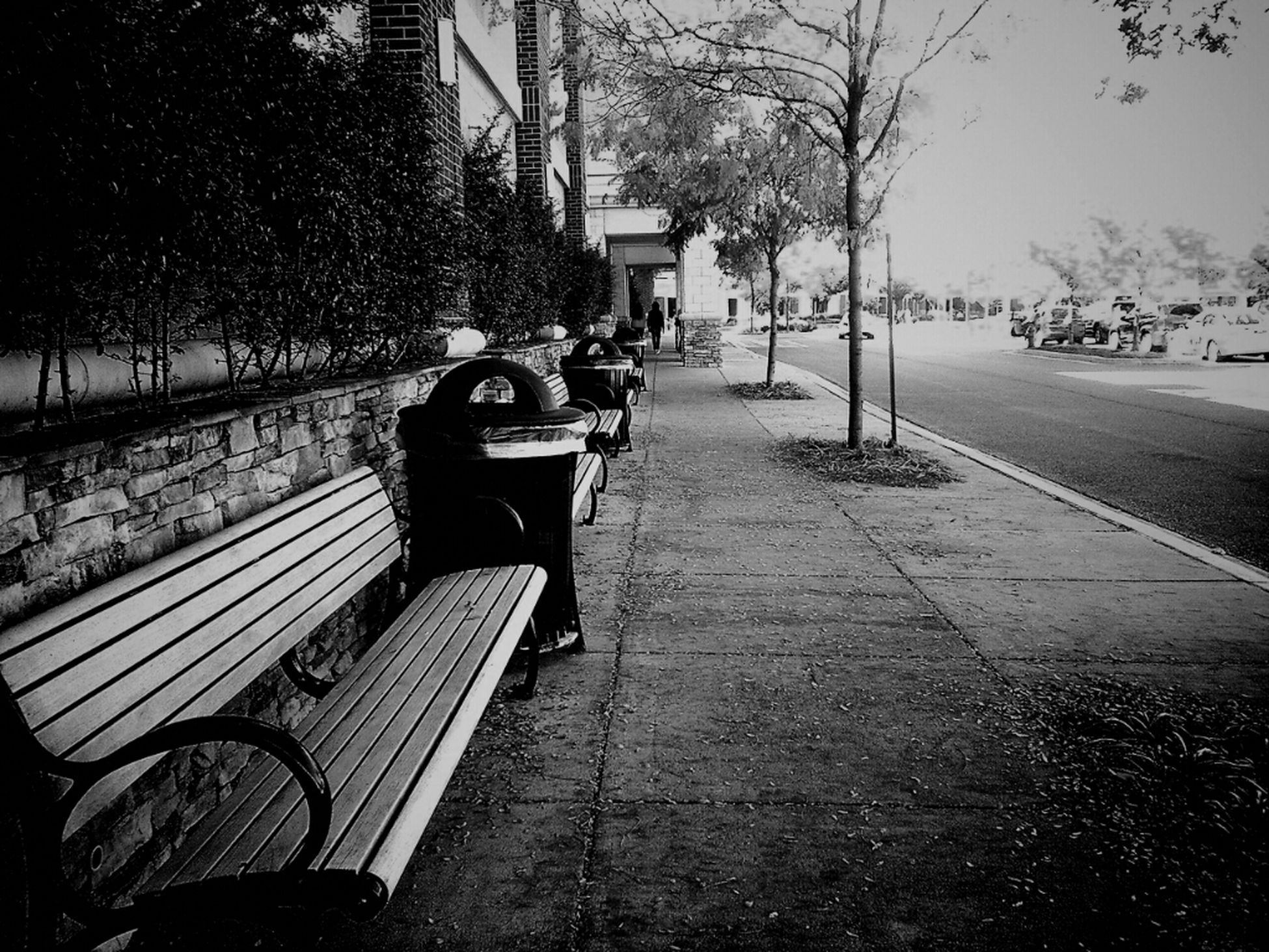 The Fall-setto #mobilephotography Blackandwhite Andrography WeAreJuxt.com Droidography Andrographer Urban Autumn Scenes