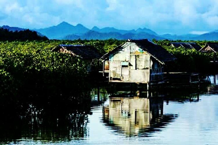 The mangroves of del carmen 🐊 Siargaoisland