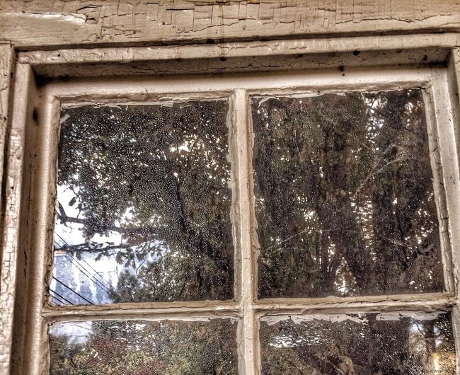 Windowporn Grimewindow Windows Window