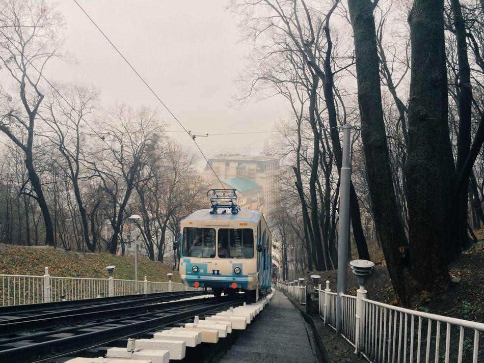 Beautiful stock photos of ukraine, Architecture, Bare Tree, Branch, Bridge - Man Made Structure