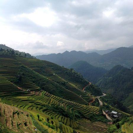 I was here!! Mucangchai Mucangchai Vietnam Travel Photography Traveling Farmland Traveling On The Farm