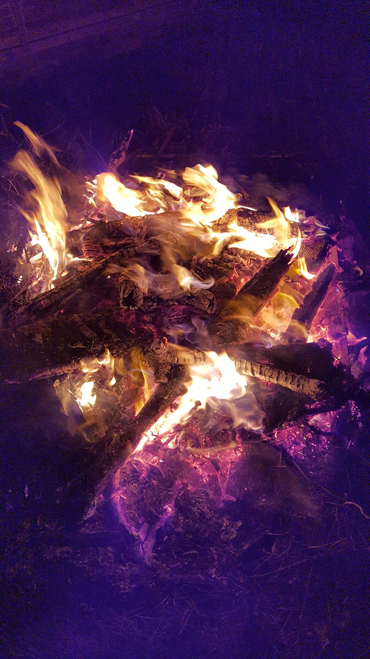Bombfire Friends BBQ Firewood Fire