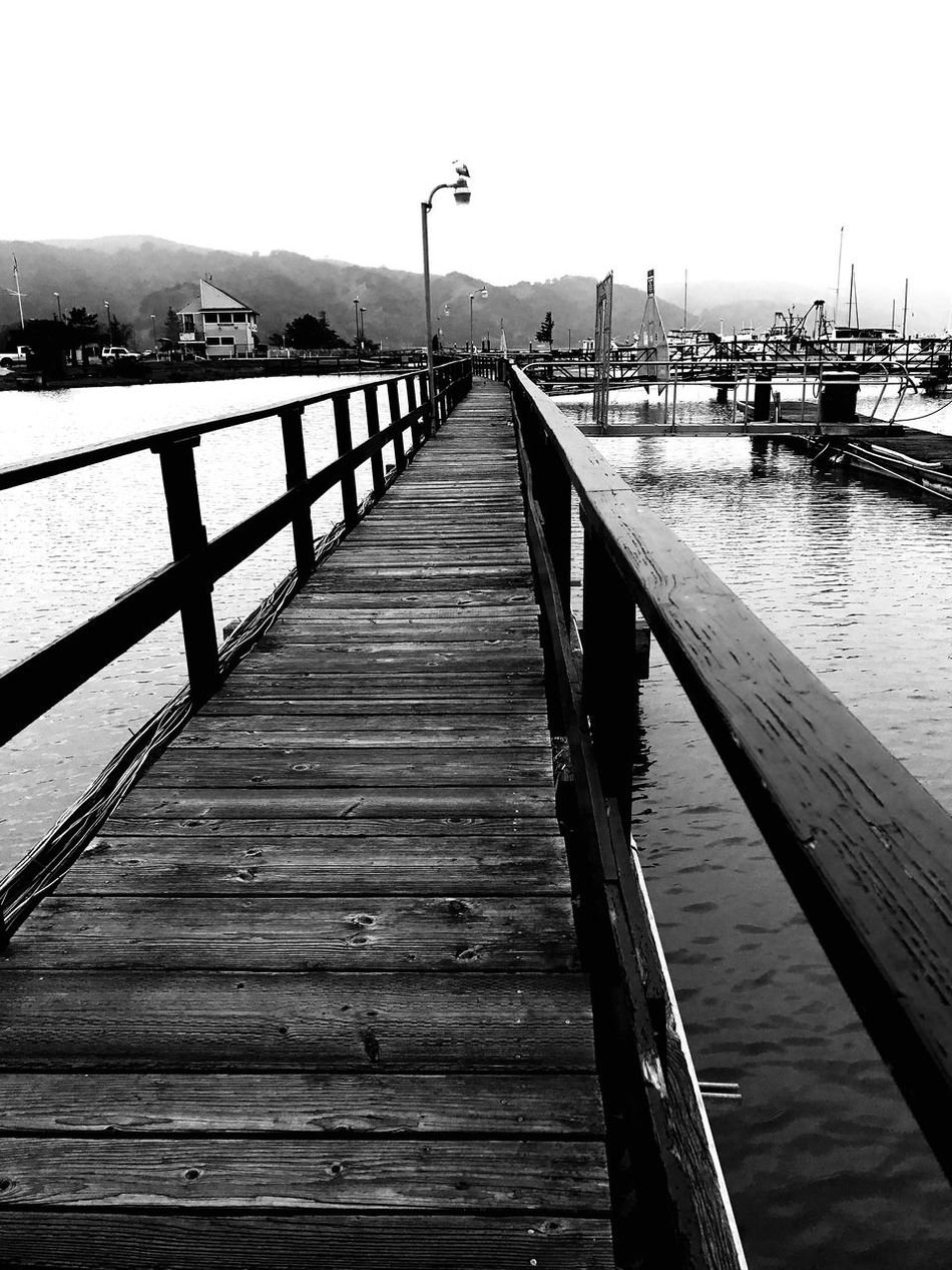 """Dock of The Misty Hills"" A wooden walkway did I take, a dock in the misty hills. Shadowed by uncertainy, truth I sought, a battle of mighty wills. A sign, a Seagull, flight! it bid, stand not to battle, my soul, I hid. By dawn the war had raged to end, spent by tourmoil, the wills did bend, and I emerged to finish the walk, smiling as the misty hills did talk, of peace again across the sea, and peace within did come to me. Railing Water Pier Jetty Boardwalk Outdoors Sky The Way Forward Blackandwhite Monochrome Blackandwhite Photography Poetry Poetry In Pictures Poetrycommunity"