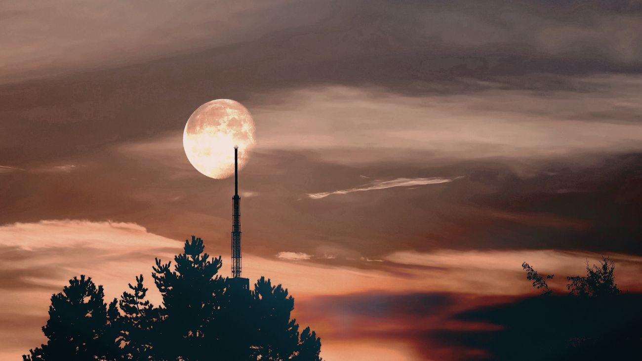 Moon_collection Nature Photography Enjoying The View EyeEm Best Edits Nature Art Beautiful Nature Fine Art Nature On Your Doorstep EyeEm Best Shots Nature Moon Shots Learn & Shoot: Balancing Elements Moon Silhouette_collection Silhouette Silhouette Photography Telemax Hannover