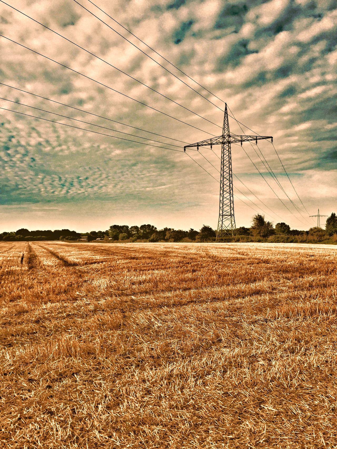 Homeland Sky Nature NEM Landscapes Rural Scenes Farmland Sunset #sun #clouds #skylovers #sky #nature #beautifulinnature #naturalbeauty #photography #landscape
