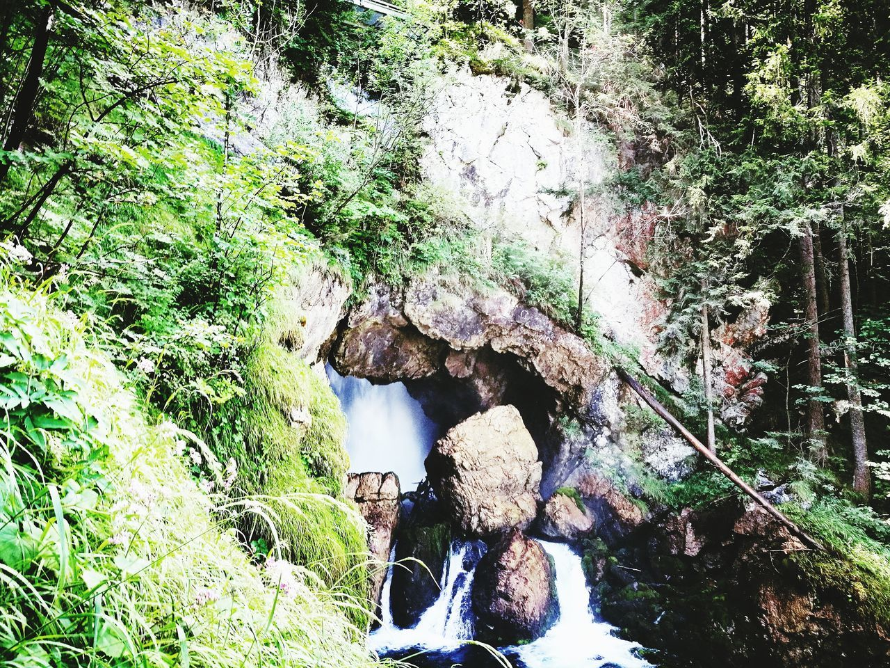 water, rock - object, nature, waterfall, motion, river, day, beauty in nature, outdoors, no people, waterfront, bridge - man made structure, scenics, forest, tree