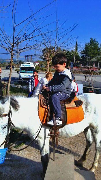 Yazdan Kalma Güneşli Günü Degerlendirelim dedik ?? Horse At Gezinti Guzelbirgun Happy :) Happyday Good Times Hihi♡ Hi! Baby