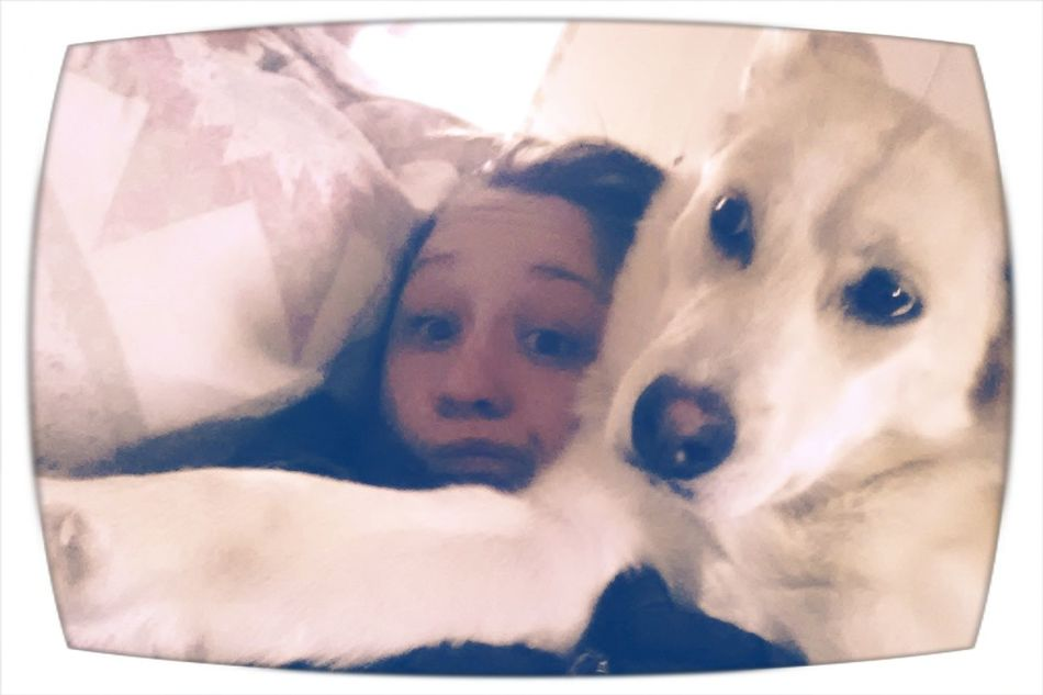 my early morning lovings Beautiful Moment & Unforgettable Moment German Shepherd Husky Collie Mix Quality Time I ♥ My Dog