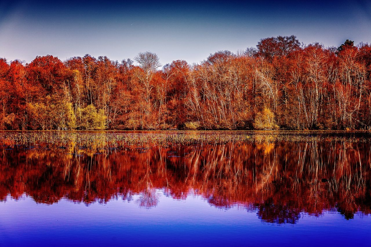 Réflection sur l'étang neuf. Reflection Sunset Water Sky Waterfront No People Outdoors RefractionReflection Lake Autumn Colors Beauty In Nature Leaf Puddle Tree Multi Colored Nature Nature Day