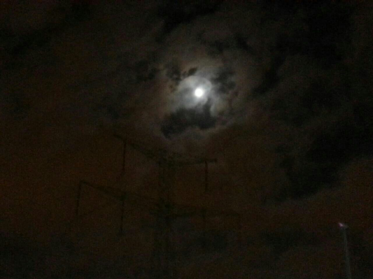 Taking Photos Nightshot Moonlight Nature