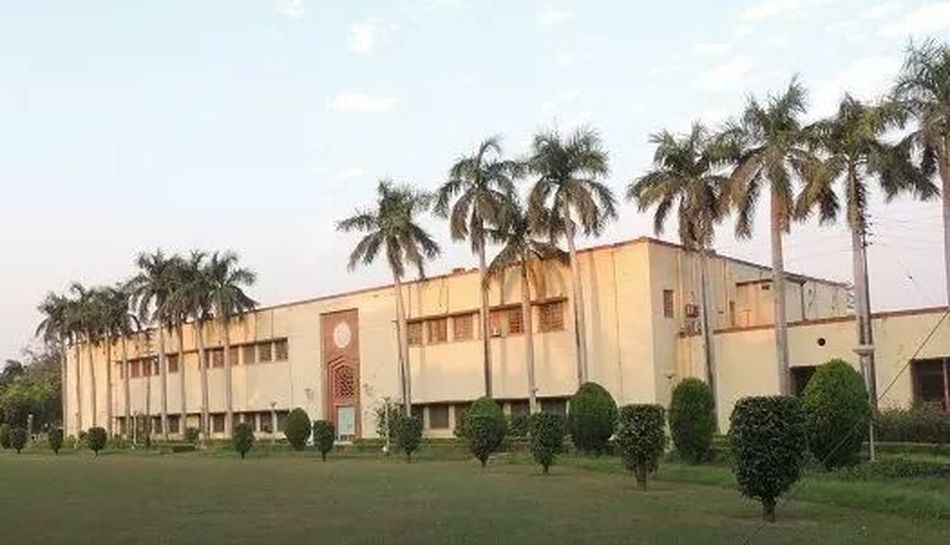 My college
