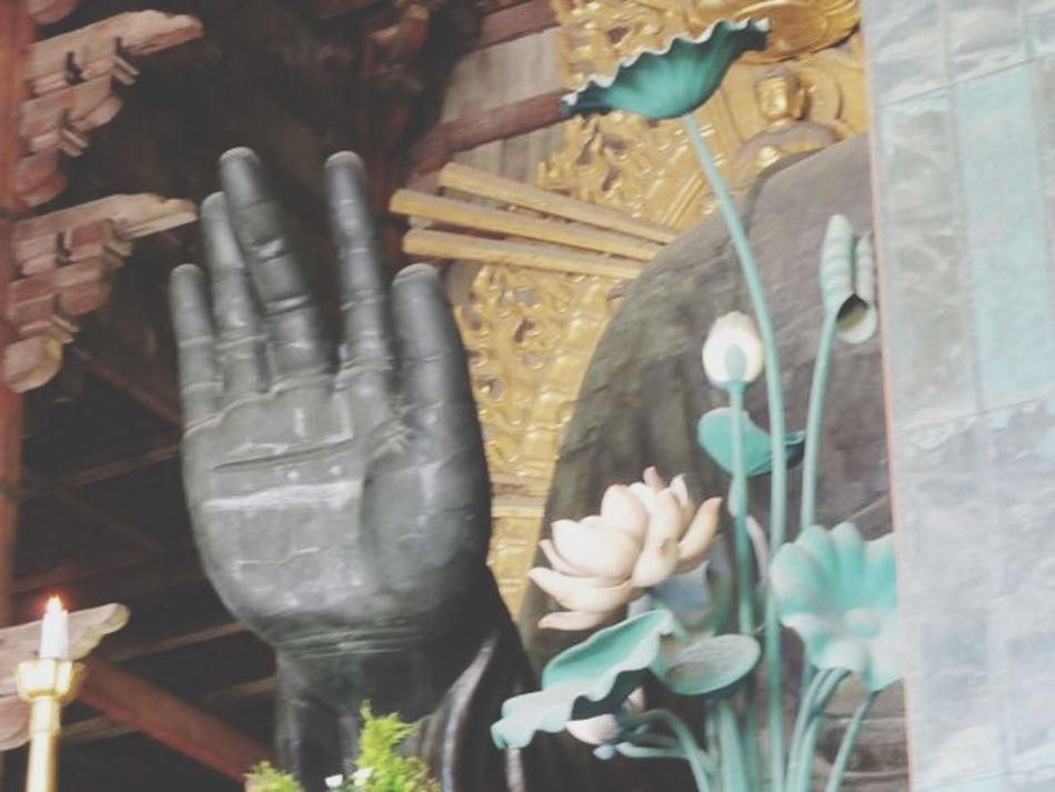 Streetphotography Japanese Culture Budda Nara Godhand Seeing The Sights
