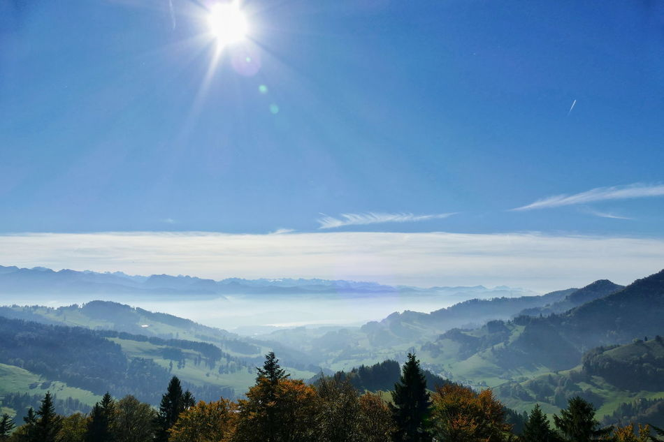 Atzmännig Zürcher Oberland Alps Switzerland Foggy Landscapes Nature Hiking Sun Blue Sky Outdoors Scenics Fall Trees No People Finding New Frontiers Miles Away