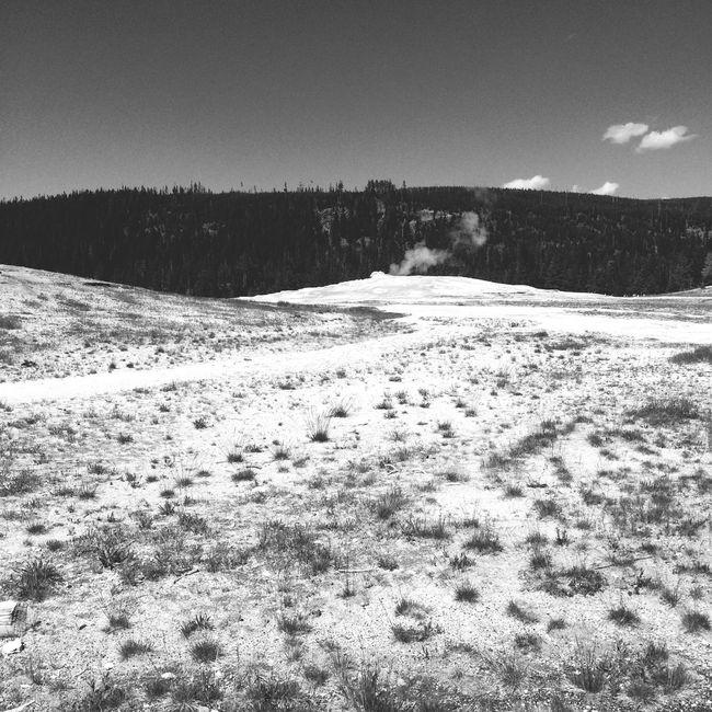 Yellowstone National Park Ynp Old Faithful