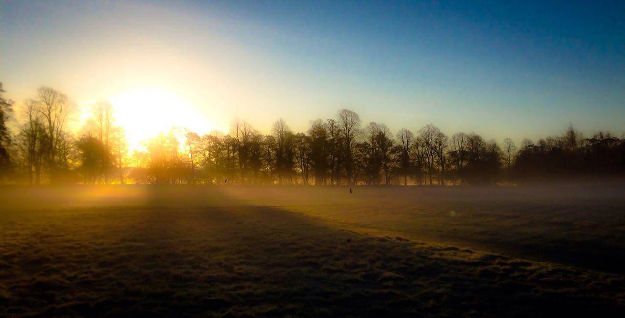 Landscape Walkingthedog Rising Sun