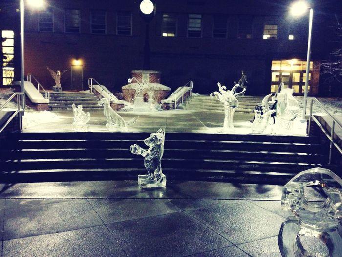 Ice sculptures! ❄